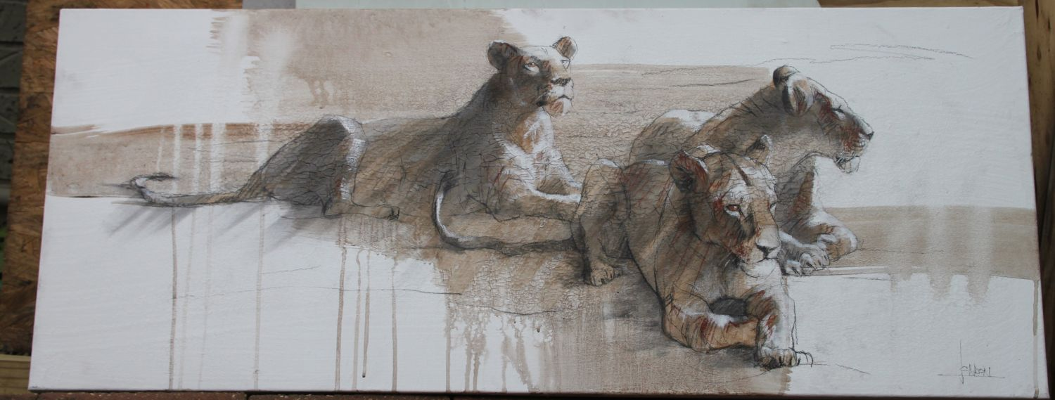 Brothers at Rest Cheetahs 24x72