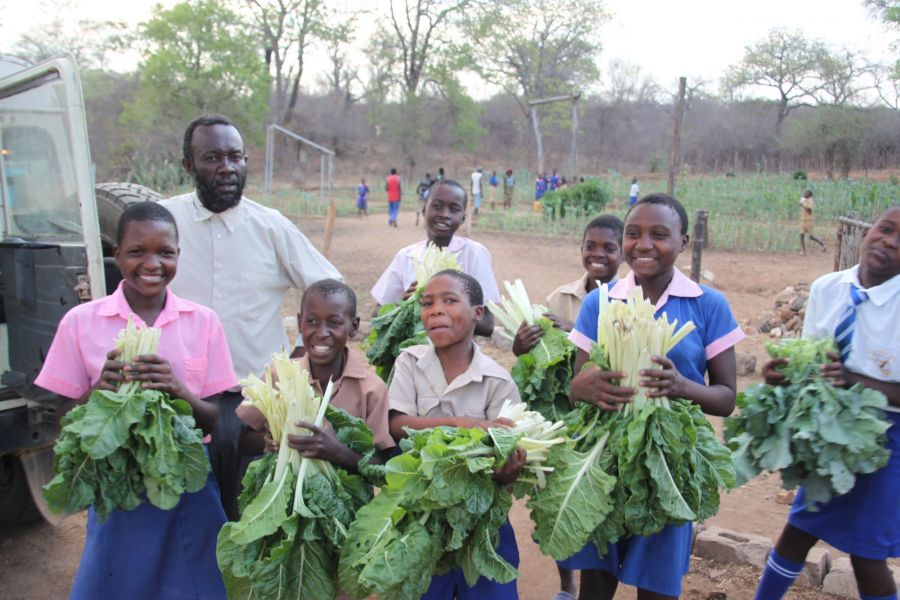 When the kids aren't breaking rocks they are growing spinach, kale and other vegetables for sale
