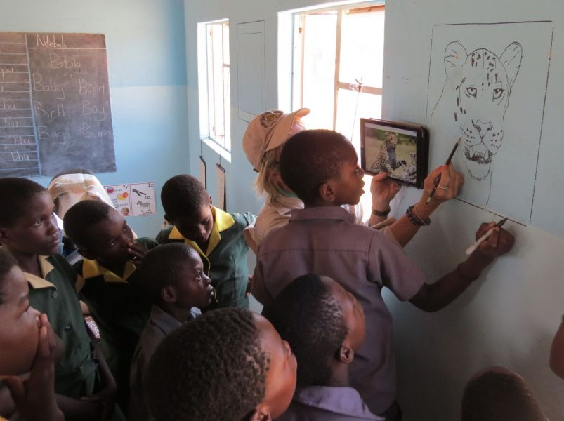 We helped the kids draw paintings of wildlife on their classroom walls