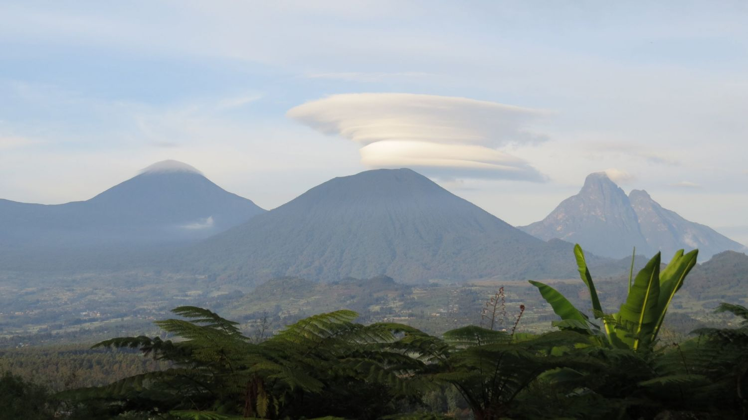 The five volcanos of Volcanos National Park are the main habitat of Rwanda's mountain Gorillas