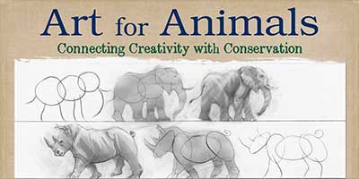 Arts For Animals Website